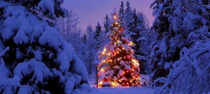 С Новолетием и наступающим Рождеством Христовым!