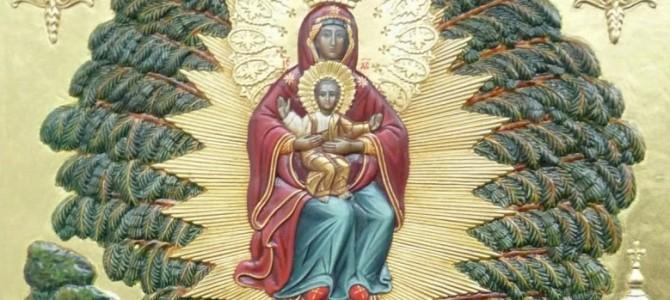 Икона Божией Матери «Елецкая-Черниговская»